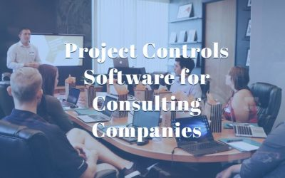 Project Controls Software for Consulting Companies
