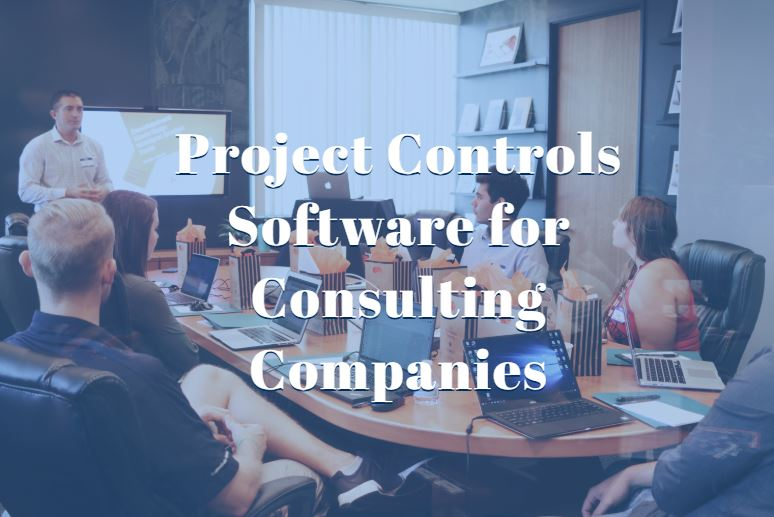 project-controls-software-consulting-companies