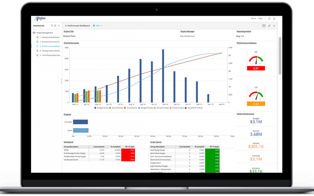 Transforming Your Business with Executive Dashboards
