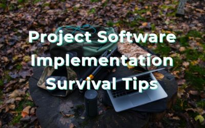 4 Tips for Surviving During Project Management Software Implementation