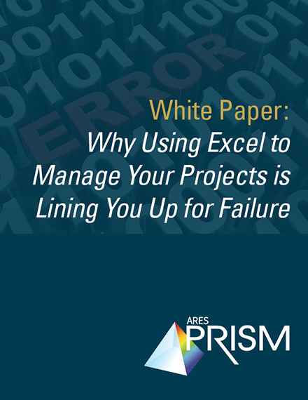 Download Project Controls White Paper